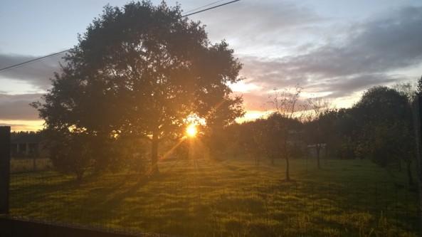 otoño posta sol